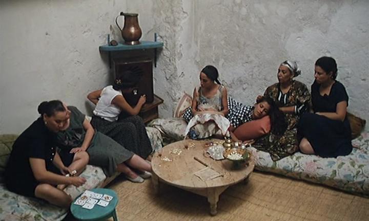 samt-el-qusur-avi_005639795